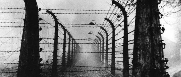 sogno prigioniero