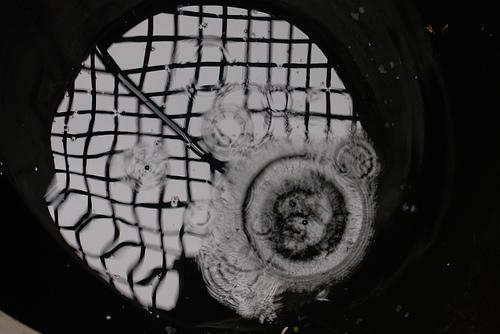Eugenio Montale cigola la carrucola del pozzo